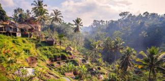 Bali, dedinka