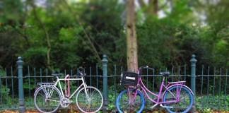 bicykle v amsterdame