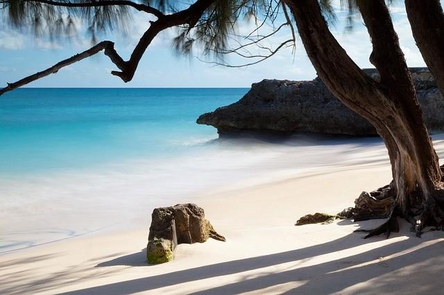 trospická piesočnatá karibská pláž na barbadose