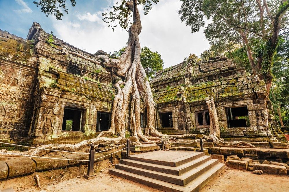 ChrámTa Prohm, Angkor, Kambodža