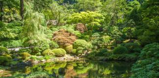 Tokio a jeho zeleň