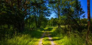 poľná cesta vo Švédsku