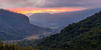 Brazília prales