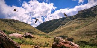 hory v Južnej Afrike