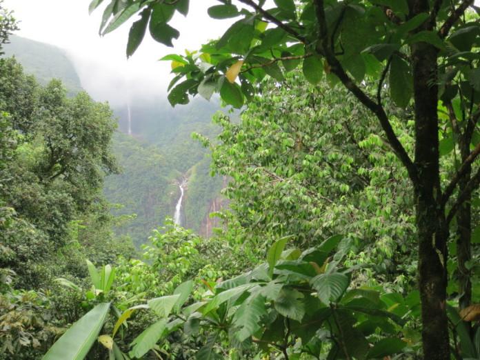 prales v Guadelope