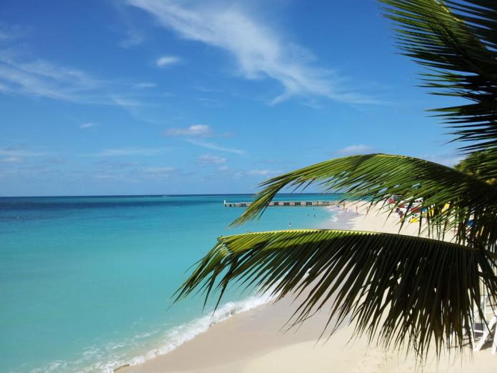 Jamajka - pobrežie, pláž, palma