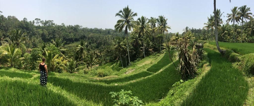 Luboš Šiška - Trip po Juhovýchodnej Ázii - Bali