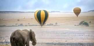 Keňa, balón, slon