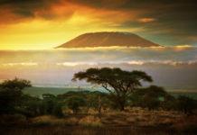 Tanzánia , Kilimanjaro , savana