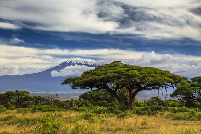 keňa, kilimanjaro