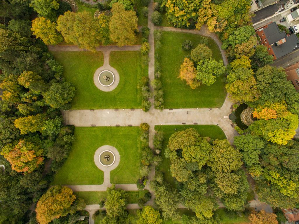 stromy parku