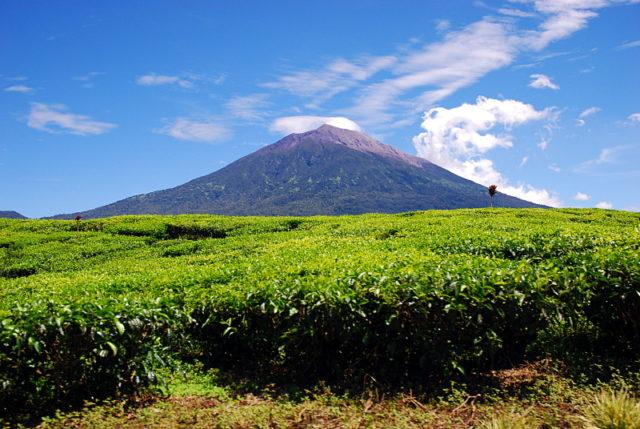 Mount Kerinci Indonézia