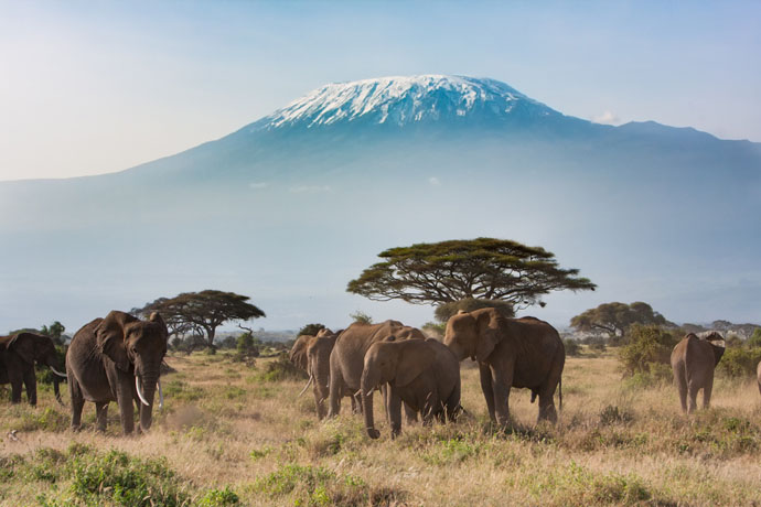 letenky Tanzánia