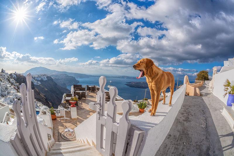 ostrov Santorini na dovolenku