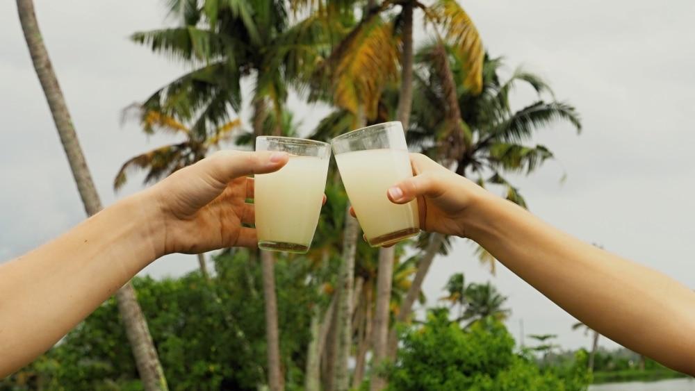 palmové víno toddy India