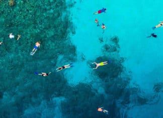 Maldivy, more