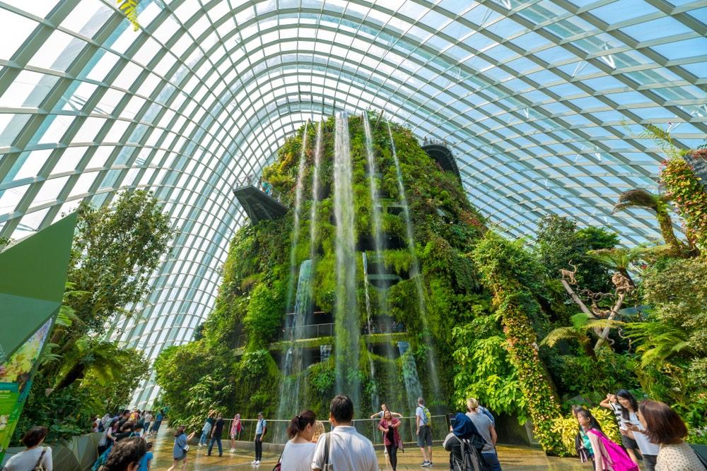 Cloud Forest singapur
