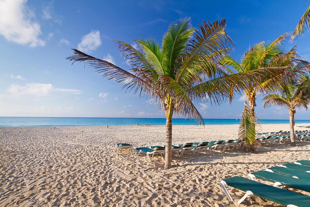 Pláž s modrými lehátkami a palmami