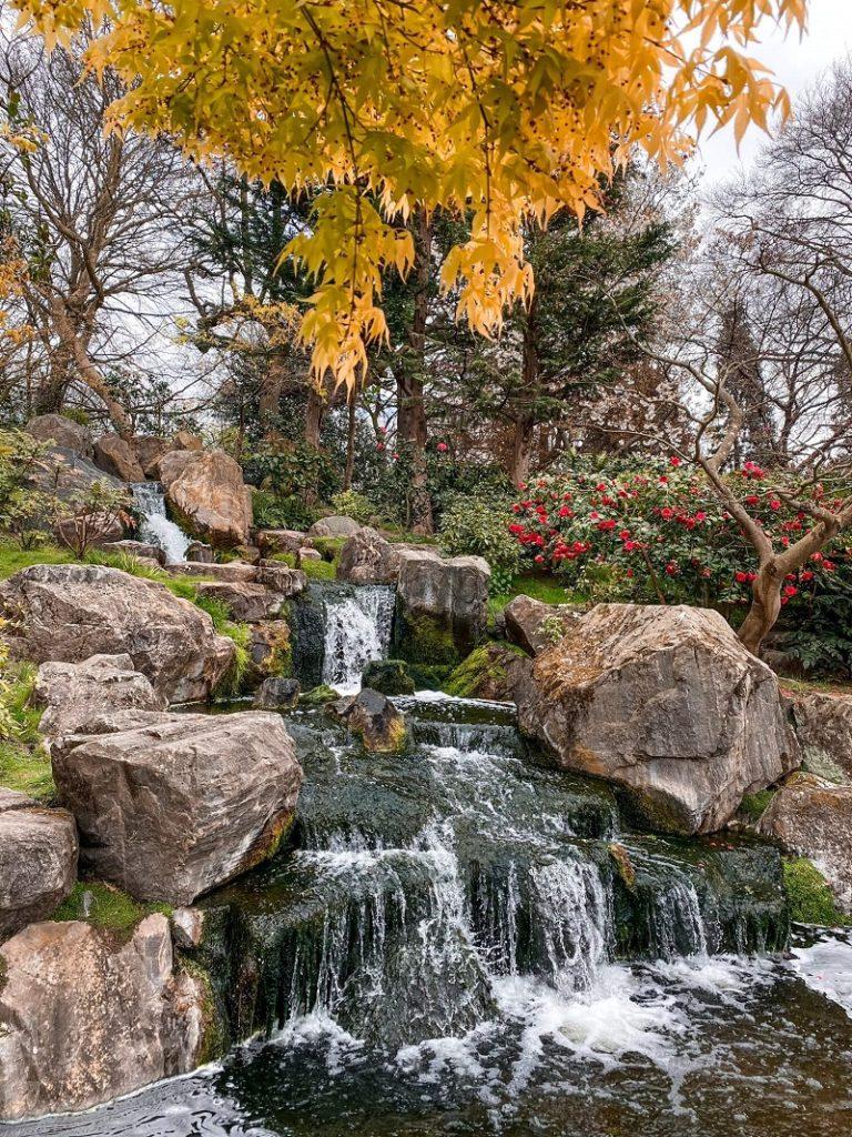 Tečúci potok, strom so žltými listami a veľké kamene