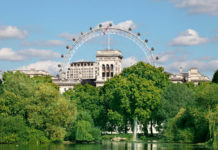 Zelené stromy a za nimi London Eye