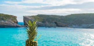 Ananás položený na skale a za ním tyrkysové more