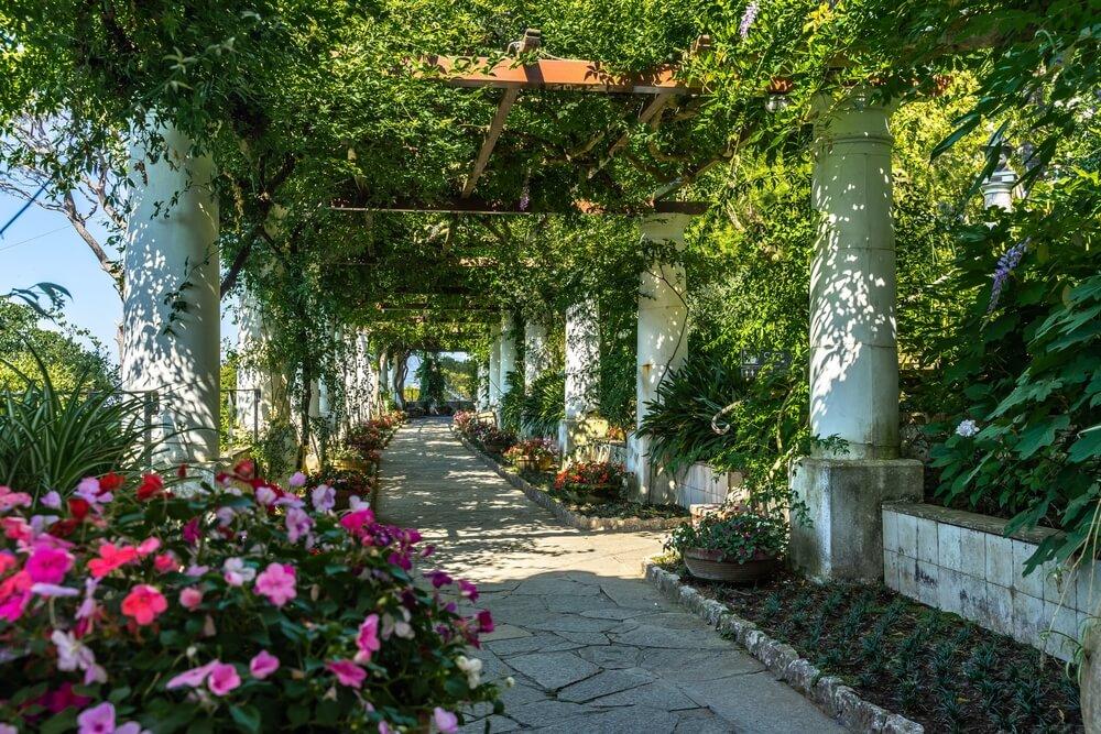 Chodník obklopený stromami a kvetmi