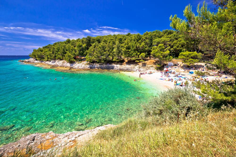 Pláž zo zelenou vodou a množstvom ľudí na pláží, postredie obklopujú borovice a ihličnany